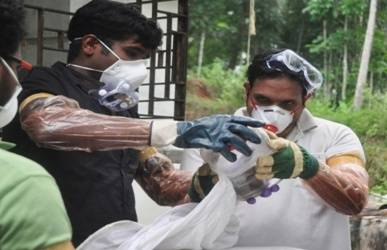 Probe on if Kerala Nipah patient got it from eating guava