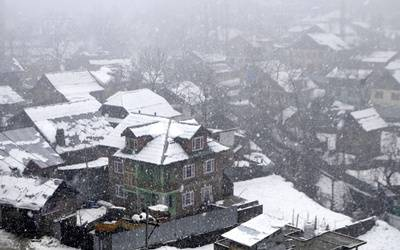 Snowfall in Kashmir damages apple orchards, cripples life
