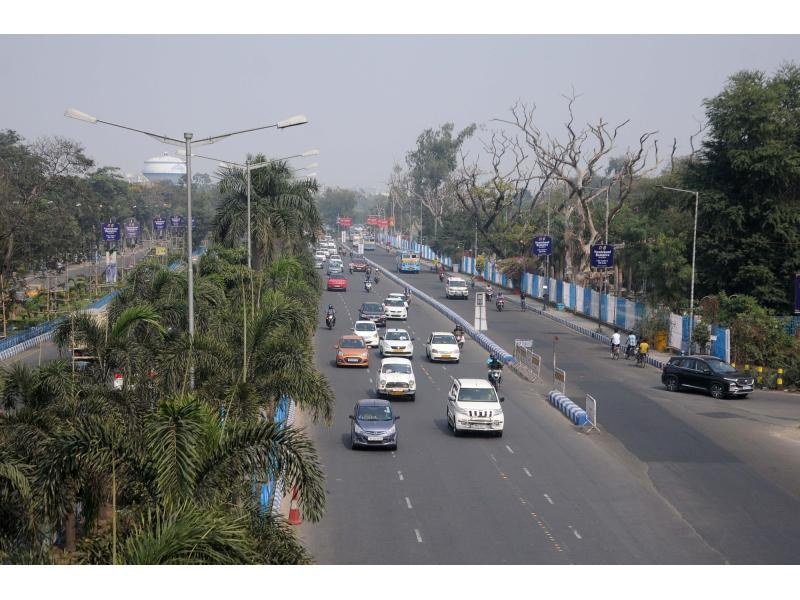 'Govt needs to promote basket of clean auto fuels, not just electric mobility'