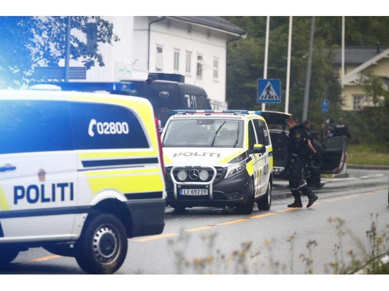 5 killed, 2 injured in Norway bow-arrow attack: Police