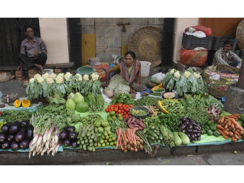 India's September wholesale price inflation eases to 10.66% (Lead)