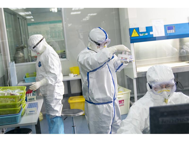Scientists who declined lab-leak theory linked to Wuhan lab: Report